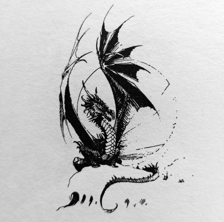 Dragon b&w II.jpg